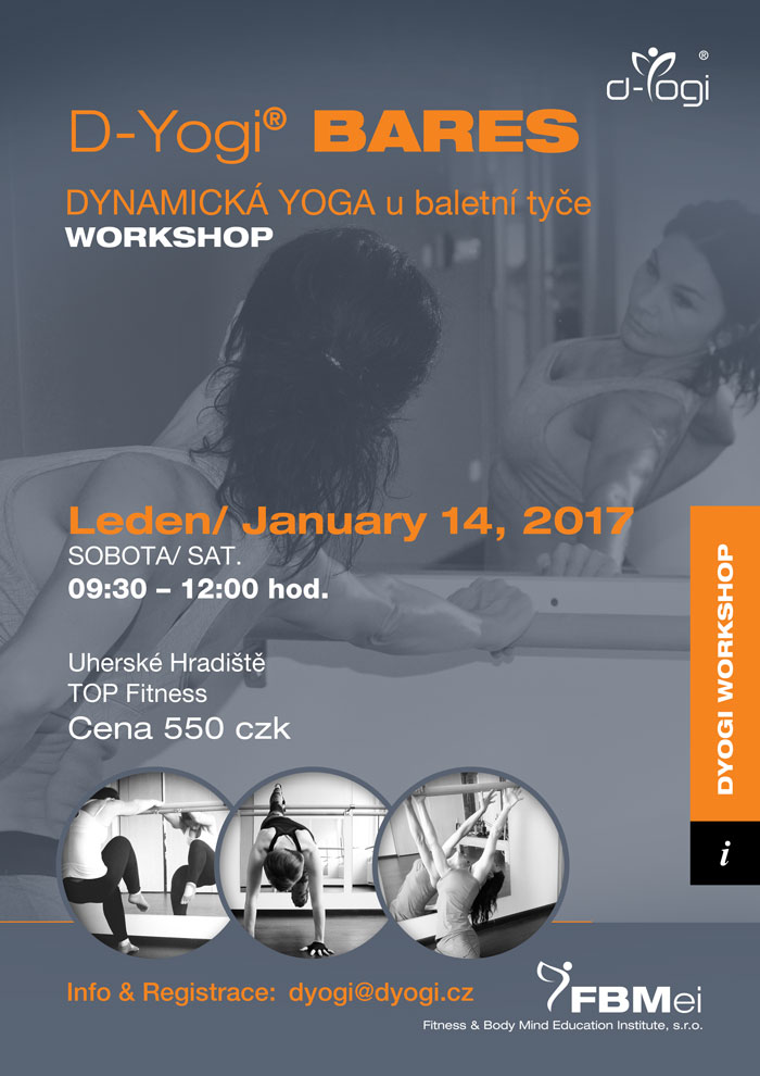 Workshop D-Yogi